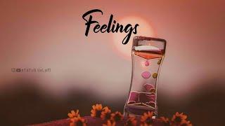Feelings BGM Whatsapp status video