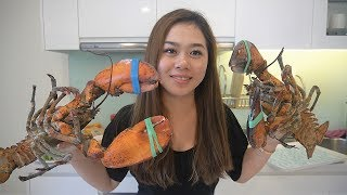 My Girlfriend First time eating LOBSTER