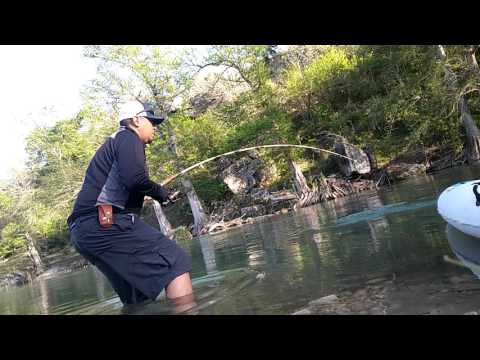 Giant Flathead Catfish On Guadalupe River Texas Fishing