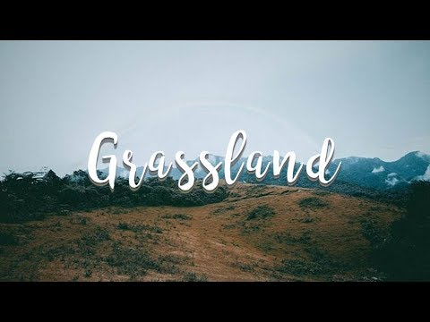 Municipality of Murcia | Grassland | Sony A6000 Travel Film