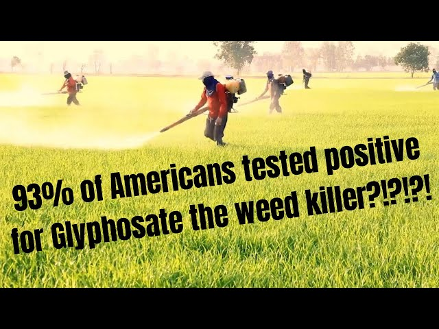 The real Risks of Glyphosate ( Round Up) in our Food! [ Free Gift in Description]