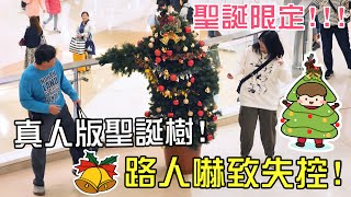 【玩命整蠱】🎄真人假扮成聖誕樹,把路人嚇得失控逃跑🚨? - 聖誕樹整蠱 Challenge 🔥