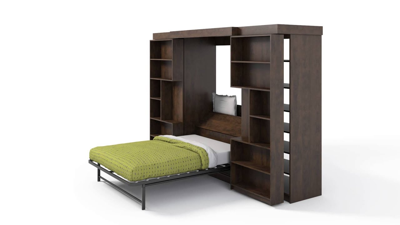 Attractive ORG Home Library Murphy Bed Awesome Ideas