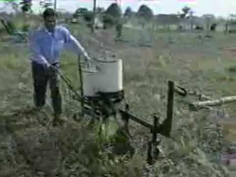 Dr. Carlos Brigard - Organic Cotton in Colombia