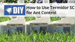 How to Use Termidor SC For Ant Control