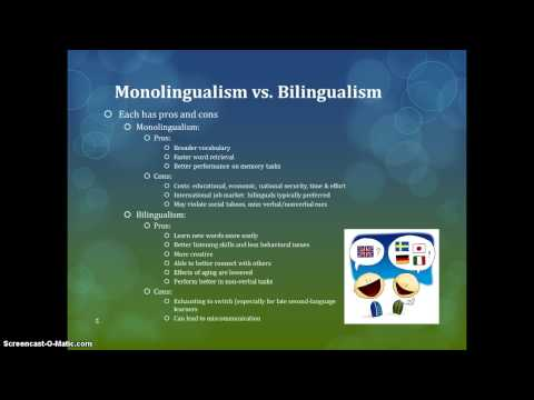 Bilingual Education in the United States and Singapore