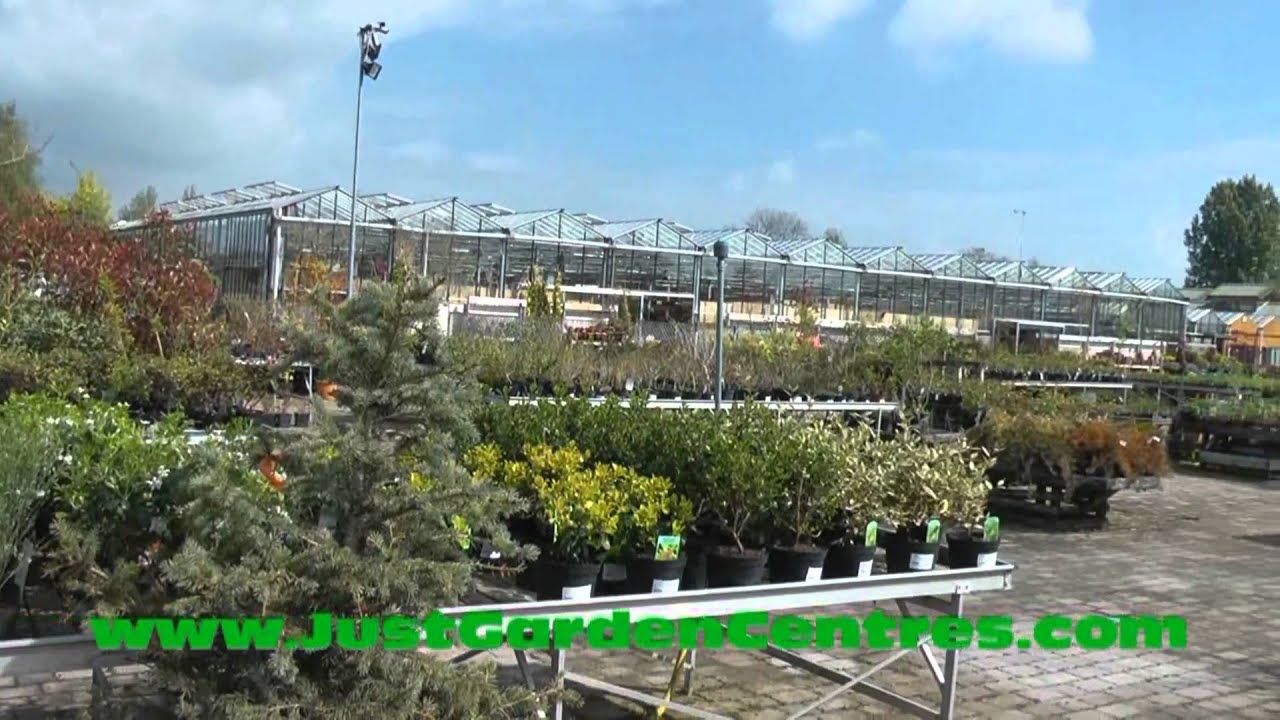 Garden Centre: Hennessy's Garden Centre, Kilkenny, Ireland