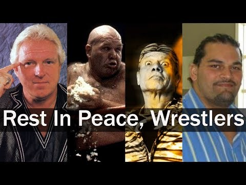 A Tribute to All WWE Wrestlers Who Died in 2017