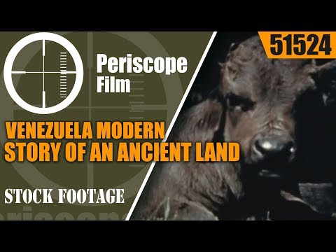 VENEZUELA   MODERN STORY OF AN ANCIENT LAND   WWII U.S. GOVERNMENT PRODUCED FILM 51524