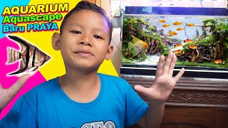 Praya Membuat Aquarium Aquascape Baru, Dengan Tanaman Asli |