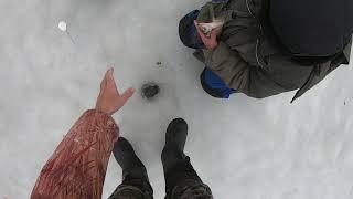 зимняя рыбалка отчеты о рыбалке за 05 04 2021
