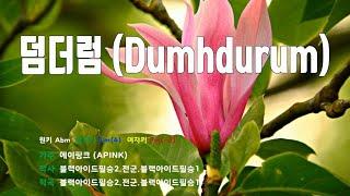 [은성 반주기] 덤더럼(Dumhdurum) - 에이핑크(APINK)