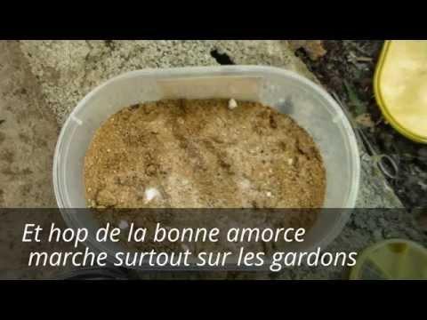 Video faire de l 39 amorce maisons pour gardons for Amorce carpe maison