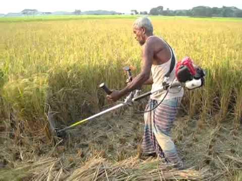 Agro Machinery Bangladesh