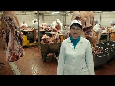 Экскурсия в колбасный цех