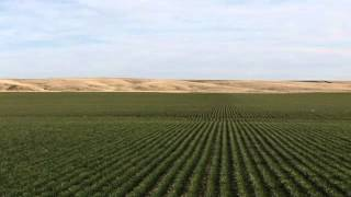 Colorado Meinzer Farm Land Auction