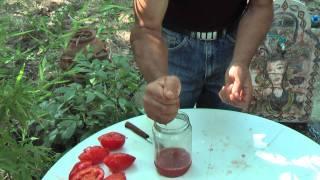 Σπόροι ντομάτας 3