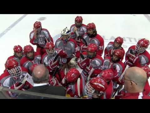 Blink Multimedia | Sports | 2014 Westmont Hilltop Hockey Highlights