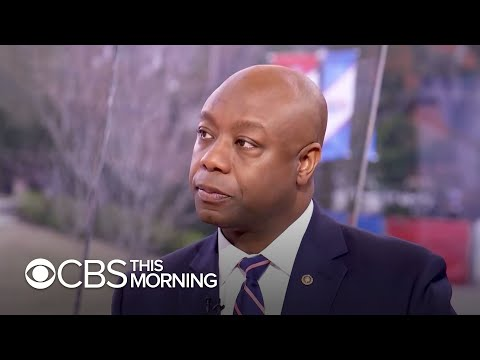 Tim Scott: Sanders would be hardest Democrat for Trump to beat