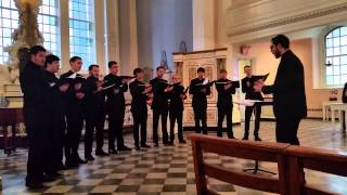 Crepusculum Chamber Choir 2