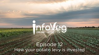 InfoVeg TV Episode 12 | How your potato levy is invested