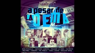 A Pesar De La Dema - Don Miguelo Ft Anthony Santo, Toxic Crow , Vakero , Mozart ,Vakero y Mas