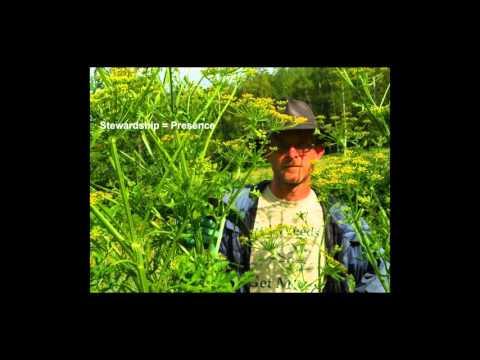 Riparian Restoration Using Chemical free Invasive Plant Control   12 9 15