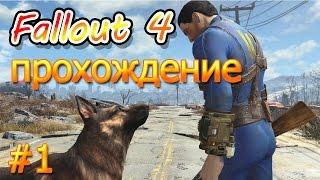 прохождение fallout 4 на слабом пк создание персонажа,решение проблемы запуска