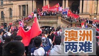 钱就是力量!谁离不开中国留学生? | 明镜焦点(20190822)