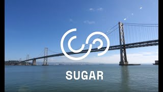 SUGAR Network - 2019 Introduction to a unique course in academia