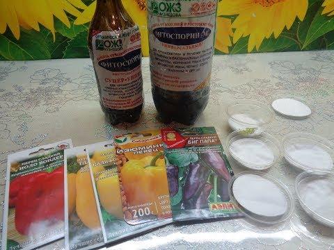 Вопрос: Как приготовить солевой раствор для обработки семян?