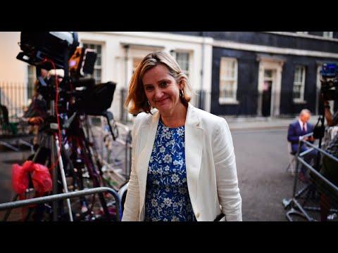 Senior minister quits govt, accuses Johnson of 'political vandalism'