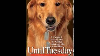 Home Book Summary: Until Tuesday: A Wounded Warrior And The Golden Retriever Who Saved Him By Lui...