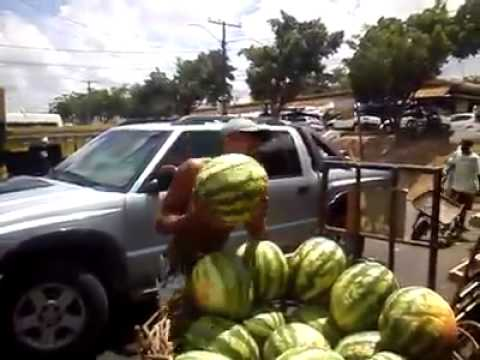 Steinmann - VIDEO: Dude Catches Watermelons