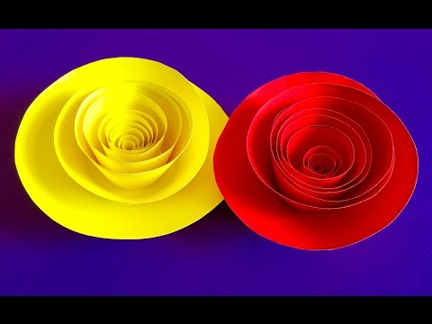Rolled Paper roses | Quilling paper flowers wall decoration | Valentines day gift and decor ideas