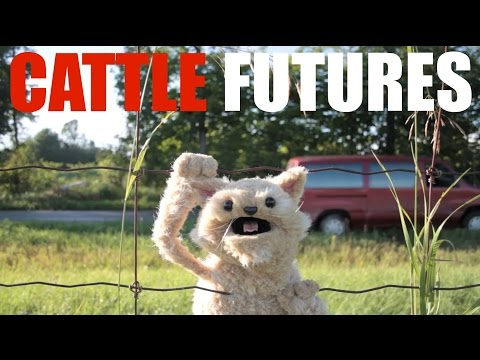 This Cat is NED - EP24 – Cattle Futures