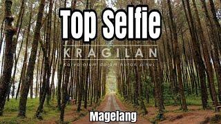 TOP SELFIE KRAGILAN | REVIEW | HUTAN PINUS #vlogester