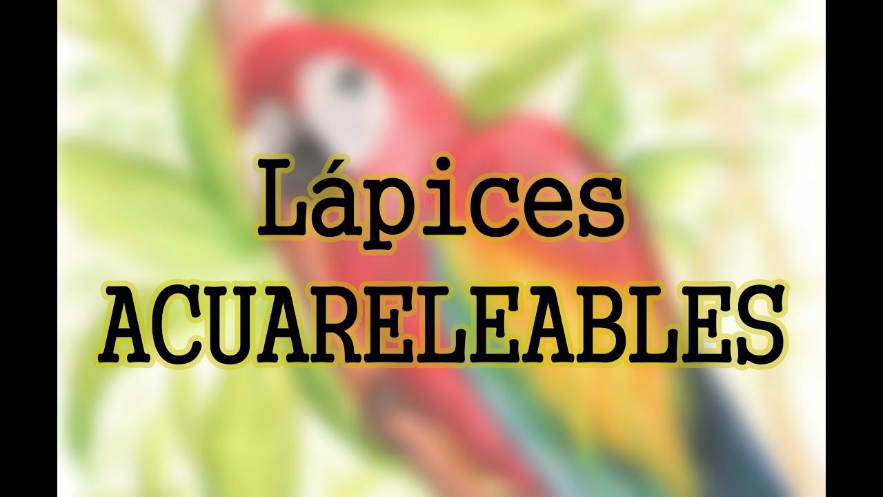 Tcnicas de Ilustracin 16 LPICES ACUARELABLES Propiedades uso