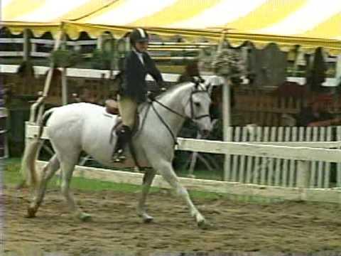 Sarah riding Kolgani/Saratoga classic 2009 Part1