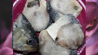 নোনা ইলিশ মাছ বানানোর পদ্ধতি /salted IIish Process