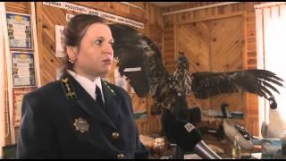 Специальный репортаж. Охрана животного мира