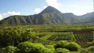 beautiful farmland in lombok,indonesia (HD)