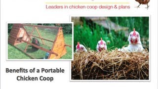 Building A Portable Chicken Coop - What Are The Benefits?