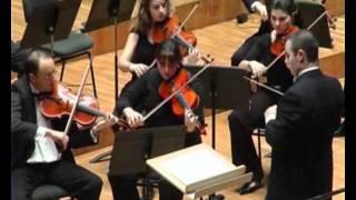 Pequeña Serenata Nocturna de Mozart - 3.Menuetto