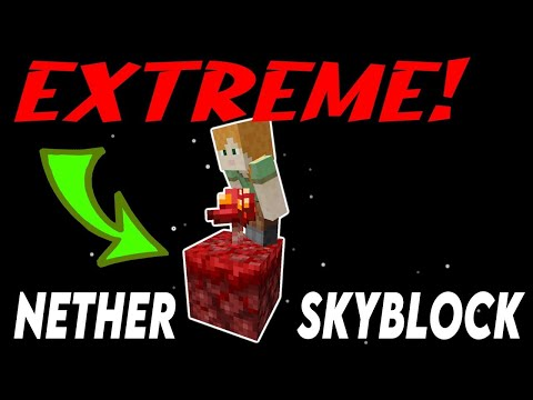 ONLY 2 blocks! [ProtoSky] EXTREME 1.16 Nether Skyblock Ep.0 from YouTube · Duration:  10 minutes 2 seconds