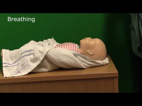 Neonatal Resuscitation - Demonstration