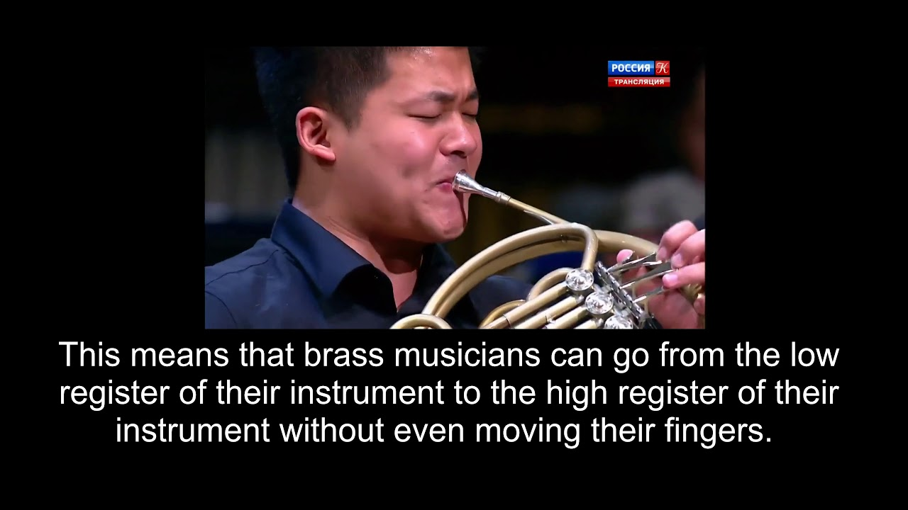 The Brass Instrument Family