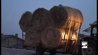 Da Vertova 8 mila euro e un camion di fieno per Amatrice