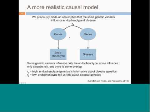 Jason Stein: Imaging Genetics Webinar
