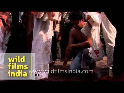 Muslims devotees flagellate themselves during Muharram procession